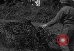 Image of United States 87th Chemical Mortar Battalion Carentan France, 1944, second 57 stock footage video 65675051326