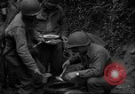 Image of United States 35th Infantry Division Saint Lo France, 1944, second 16 stock footage video 65675051330