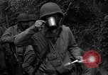 Image of United States 35th Infantry Division Saint Lo France, 1944, second 19 stock footage video 65675051330