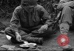 Image of United States 35th Infantry Division Saint Lo France, 1944, second 40 stock footage video 65675051330