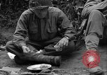 Image of United States 35th Infantry Division Saint Lo France, 1944, second 44 stock footage video 65675051330