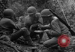 Image of United States 35th Infantry Division Saint Lo France, 1944, second 55 stock footage video 65675051330