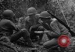 Image of United States 35th Infantry Division Saint Lo France, 1944, second 57 stock footage video 65675051330