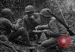 Image of United States 35th Infantry Division Saint Lo France, 1944, second 61 stock footage video 65675051330