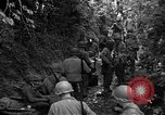 Image of United States 35th Infantry Division Saint Lo France, 1944, second 24 stock footage video 65675051331