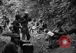 Image of United States 35th Infantry Division Saint Lo France, 1944, second 30 stock footage video 65675051331
