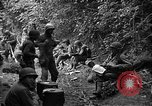 Image of United States 35th Infantry Division Saint Lo France, 1944, second 32 stock footage video 65675051331