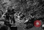 Image of United States 35th Infantry Division Saint Lo France, 1944, second 37 stock footage video 65675051331