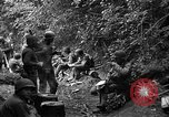 Image of United States 35th Infantry Division Saint Lo France, 1944, second 38 stock footage video 65675051331