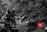 Image of United States 35th Infantry Division Saint Lo France, 1944, second 39 stock footage video 65675051331
