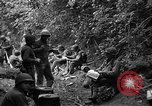 Image of United States 35th Infantry Division Saint Lo France, 1944, second 40 stock footage video 65675051331