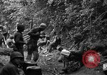 Image of United States 35th Infantry Division Saint Lo France, 1944, second 42 stock footage video 65675051331