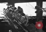Image of shell boat crew Wellesley Massachusetts USA, 1936, second 10 stock footage video 65675051380