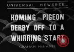 Image of homing pigeons Selby England United Kingdom, 1936, second 1 stock footage video 65675051381