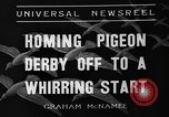 Image of homing pigeons Selby England United Kingdom, 1936, second 2 stock footage video 65675051381
