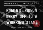 Image of homing pigeons Selby England United Kingdom, 1936, second 4 stock footage video 65675051381