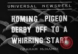 Image of homing pigeons Selby England United Kingdom, 1936, second 6 stock footage video 65675051381