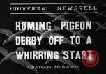 Image of homing pigeons Selby England United Kingdom, 1936, second 9 stock footage video 65675051381