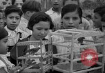 Image of birds Mexico, 1936, second 13 stock footage video 65675051388