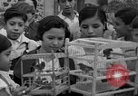 Image of birds Mexico, 1936, second 14 stock footage video 65675051388