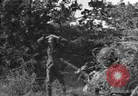 Image of German soldiers Cherbourg Normandy France, 1944, second 15 stock footage video 65675051433