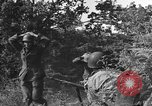 Image of German soldiers Cherbourg Normandy France, 1944, second 16 stock footage video 65675051433