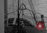 Image of Allied diver Atlantic Ocean, 1944, second 6 stock footage video 65675051435