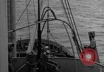 Image of Allied diver Atlantic Ocean, 1944, second 7 stock footage video 65675051435