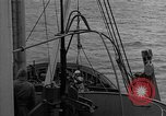 Image of Allied diver Atlantic Ocean, 1944, second 11 stock footage video 65675051435