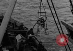 Image of Allied diver Atlantic Ocean, 1944, second 20 stock footage video 65675051435