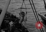 Image of Allied diver Atlantic Ocean, 1944, second 24 stock footage video 65675051435