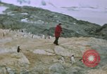 Image of South Pole expedition South Pole, 1939, second 24 stock footage video 65675051520