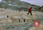Image of South Pole expedition South Pole, 1939, second 26 stock footage video 65675051520