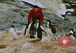 Image of South Pole expedition South Pole, 1939, second 38 stock footage video 65675051520