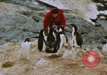 Image of South Pole expedition South Pole, 1939, second 39 stock footage video 65675051520