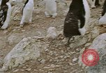 Image of South Pole expedition South Pole, 1939, second 53 stock footage video 65675051520