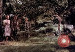 Image of People visiting a forest in their 1939 Ford car United States USA, 1939, second 21 stock footage video 65675051552