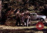 Image of People visiting a forest in their 1939 Ford car United States USA, 1939, second 28 stock footage video 65675051552