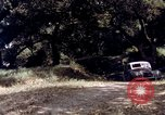Image of People visiting a forest in their 1939 Ford car United States USA, 1939, second 59 stock footage video 65675051552