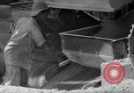 Image of United States Army Engineers Saipan Marianas Islands, 1944, second 44 stock footage video 65675051683