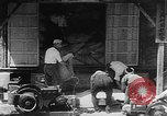 Image of Japanese civilians Tokyo Japan, 1939, second 59 stock footage video 65675051707