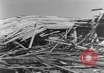 Image of Tests of incendiary bombs against wooden structures Florida United States USA, 1945, second 46 stock footage video 65675051711