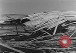 Image of Tests of incendiary bombs against wooden structures Florida United States USA, 1945, second 49 stock footage video 65675051711