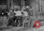Image of Steel workers silhouetted against fog United States USA, 1943, second 20 stock footage video 65675051747
