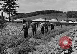 Image of Camp Fairchance in Boone County West Virginia West Virginia USA, 1937, second 41 stock footage video 65675051770