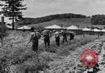 Image of Camp Fairchance in Boone County West Virginia West Virginia USA, 1937, second 42 stock footage video 65675051770