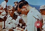 Image of Pilot examines flak damage to his P-47 aircraft Corsica France, 1944, second 59 stock footage video 65675051897
