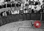 Image of cockfighting Guaynabo Puerto Rico, 1935, second 12 stock footage video 65675052095