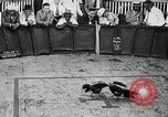 Image of cockfighting Guaynabo Puerto Rico, 1935, second 26 stock footage video 65675052095