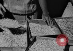 Image of workers San Juan Puerto Rico, 1935, second 14 stock footage video 65675052102